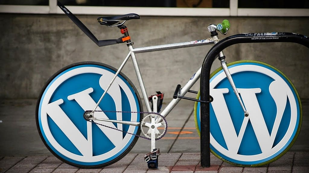 10 errores en WordPress que debes evitar · Agencia SEO & Marketing Digital René Rodríguez