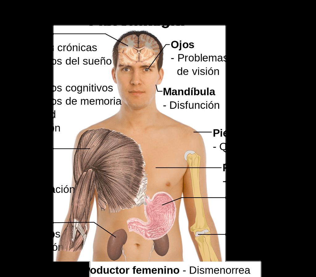 Síntomas de la Fibromialgia · Clínica Tao Salud Natural